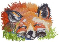 Fox sleeping in the grass
