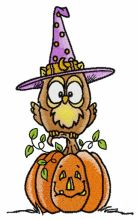 Owl in witch hat 2