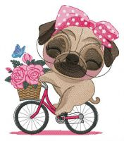 Pug-dog riding bike