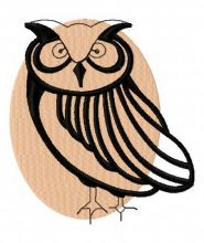 Brown owl 2