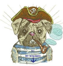 Pirate pug-dog