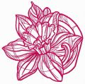 Pink daffodil one color embroidery design